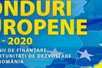 DIASPORA START-UP. Fonduri europene pentru romanii care se intorc din strainatate si vor sa inceapa o afacere