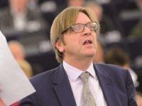 Negociatorul-sef al UE, Guy Verhofstadt, a reactionat extrem de critic dupa ce Boris Johnson si-a criticat concetatenii cu abordari pro-europene
