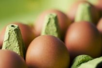Eggs recall in UK: 700,000 distributed in UK contaminated with Fipronil pesticide. Sainsbury's, Morrisons, Waitrose and Asda withdrawn products