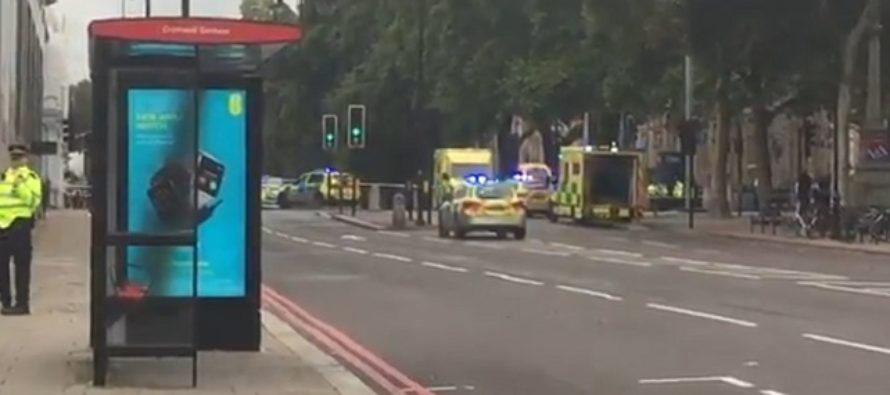 Natural History Museum of London: Several injured after car 'mounts pavement' and hits pedestrians in South Kensington
