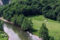 Se va alege praful de patrimoniul natural romanesc! ONG-urile de mediu cer ajutorul UE pentru a opri distrugerea ariilor protejate