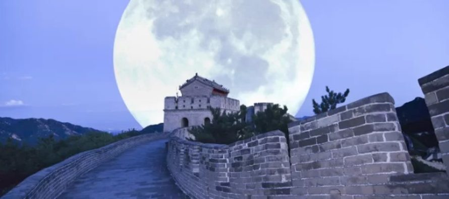 China a obtinut incoltirea primei seminte de bumbac pe Luna. Succesul se incadreaza in experimentele sondei Chang'e 4