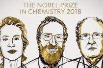 Premiul Nobel pentru Chimie a fost castigat de trei cercetatori din SUA si Marea Britanie pentru ″o revolutie bazata pe evolutie″