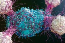 In Marea Britanie au fost confirmate alte doua cazuri noi de coronavirus